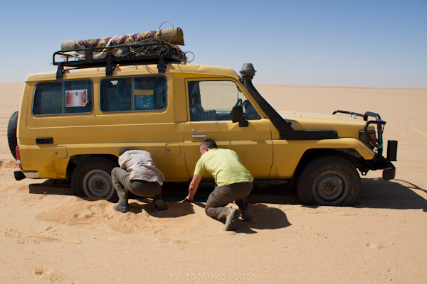 Using sand ladders on the Selima sand sheet...