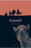 Camel by Robert Irwin