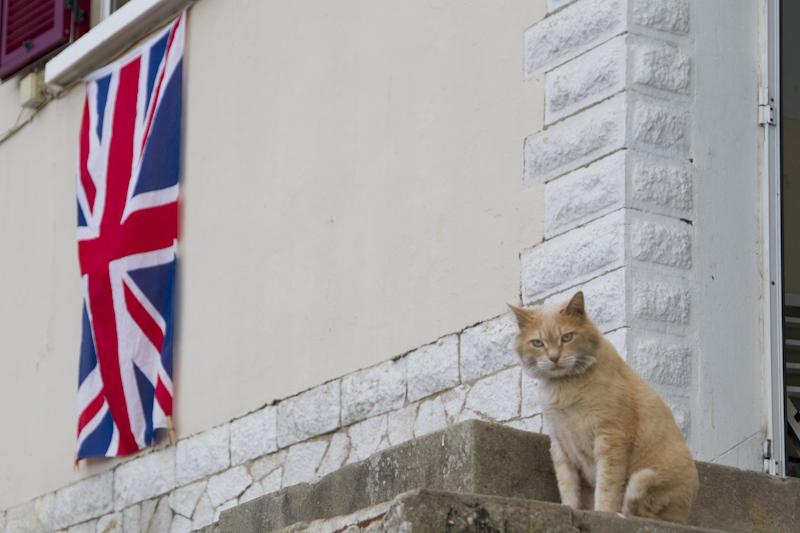 "…""BRITISH I said…. Maybe you didn't hear me…"""