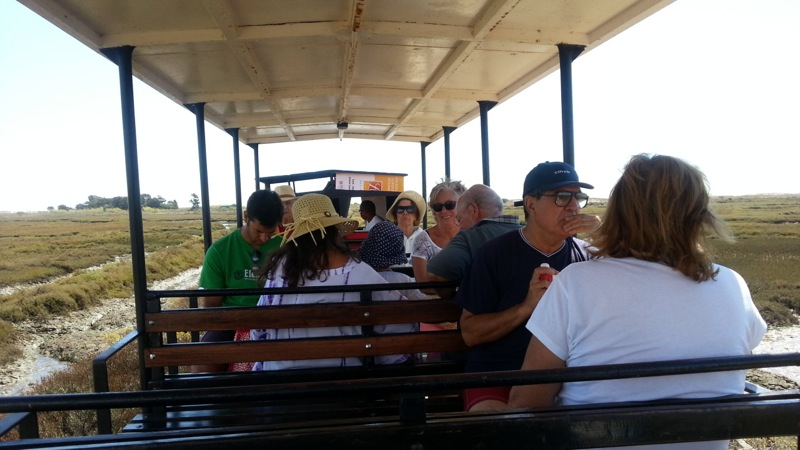 This little tourist train makes the short trip over to Ila de Tavira - or you can walk in 8 or 10 minutes...