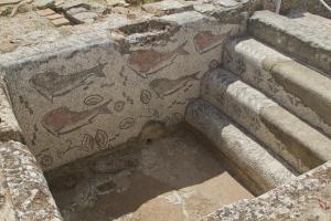 The bath at the frigidarium, with fish mosaics...