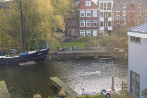 View from my window as a swan glides past...