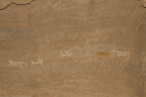 These paintings were high up on a wall. The floor of the cave was washed out by water, and was once much higher.