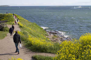 Walking around the windswept defences of Suomenlinna Island...