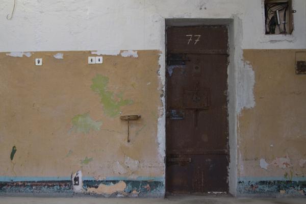 Door after door opened off the curving ¼ mile halls on each floor...