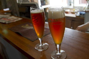 I sampled a Stallhagen brew made from roasted pumpkin, and a lovely Russian Ale...