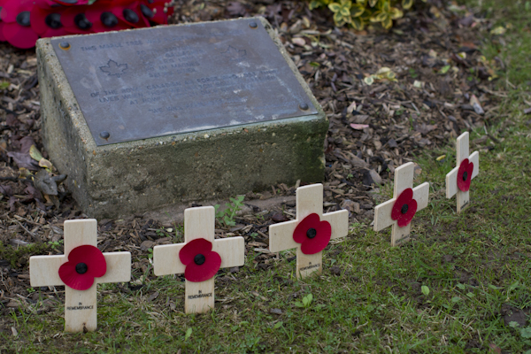 On the day we visited, local schoolchildren had left crosses with poppies — one for each man