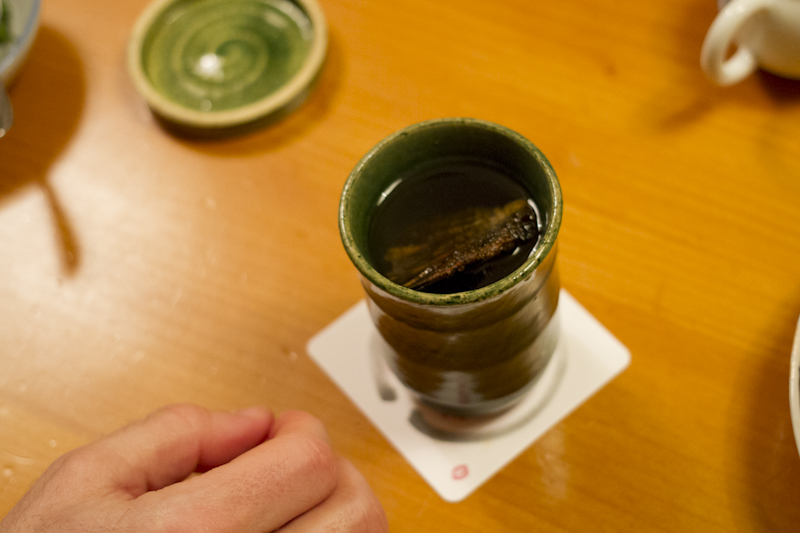 Hire-Sake: a nice cup of warm sake with a dried fish fin in it...