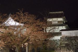 Small groups filed through the massive wooden gates of Fukuoka castle...